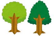 終活で「樹木葬」を学ぶ